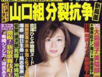 【運転免許】吉澤容疑者「向こうが信号無視をした。芸能人で急いでいる、遅れたらウン千万円の損害になる」